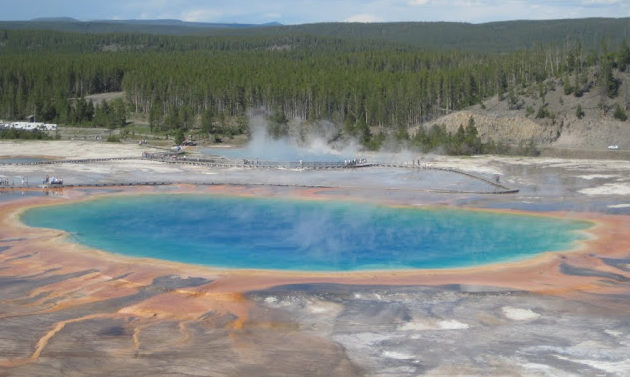 Yellowstone National Park, 2008