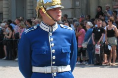Swedish Change of Guards, 2011