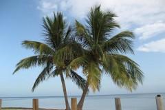 Miami - Ft. Lauderdale, Florida, 2007